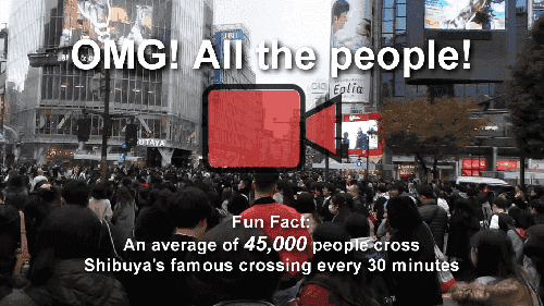 Shibuya Crossing - 45,000 people per 30 minutes